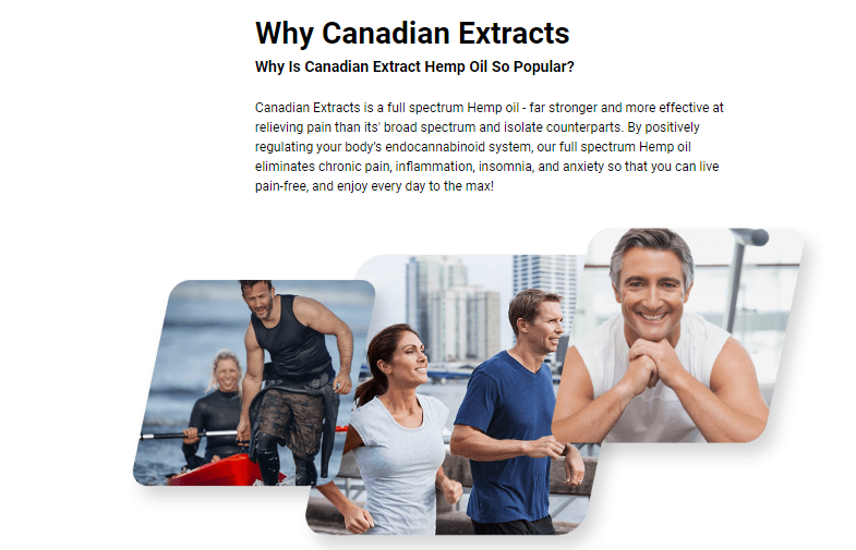 Canadian Extracts Cbd Oil Canada